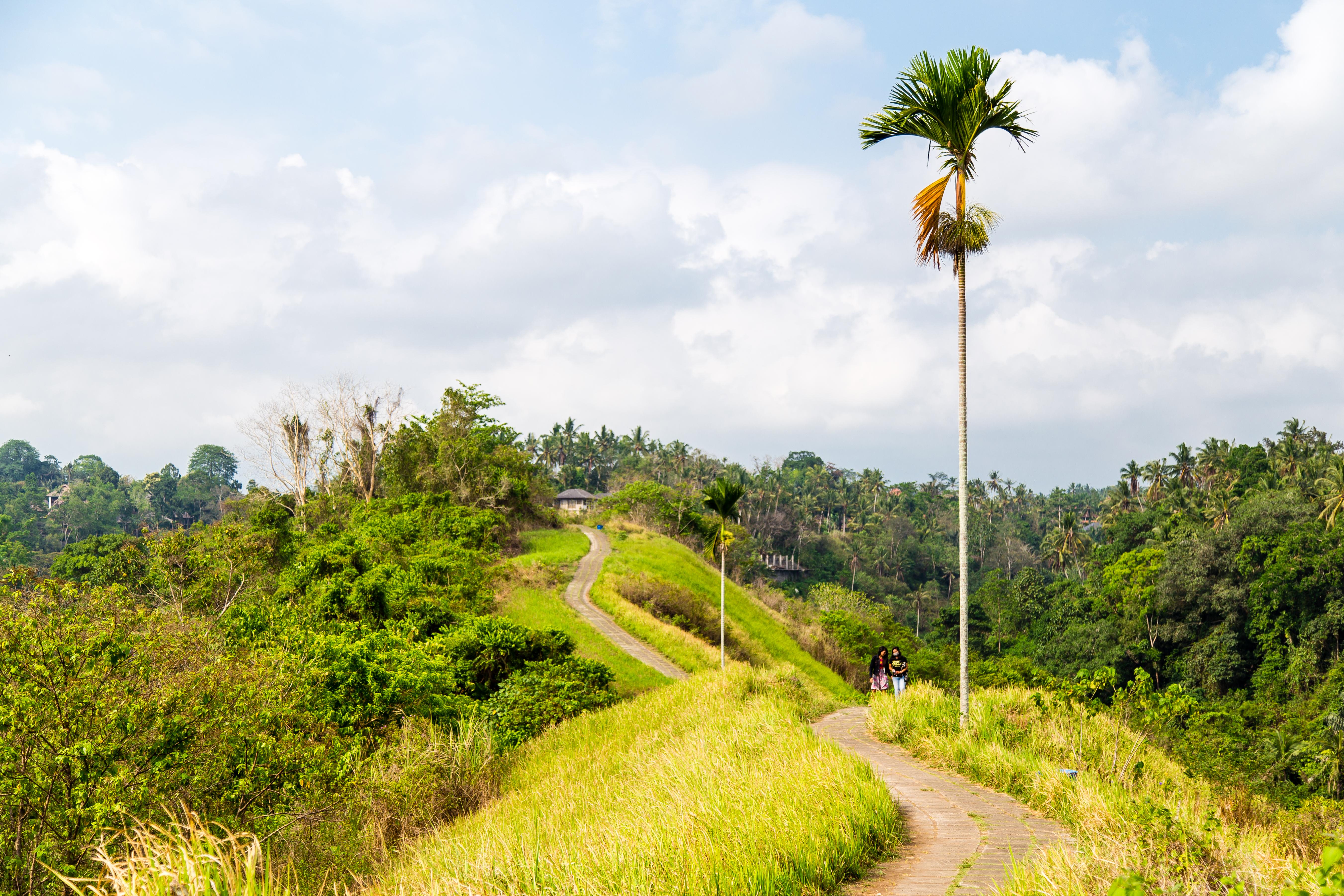 Bali-4447