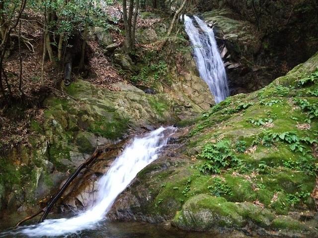 竜ヶ岳 宇賀渓 五階滝