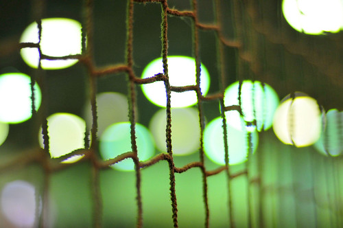 What light through yonder polo netting? | by flickrfanmk2007