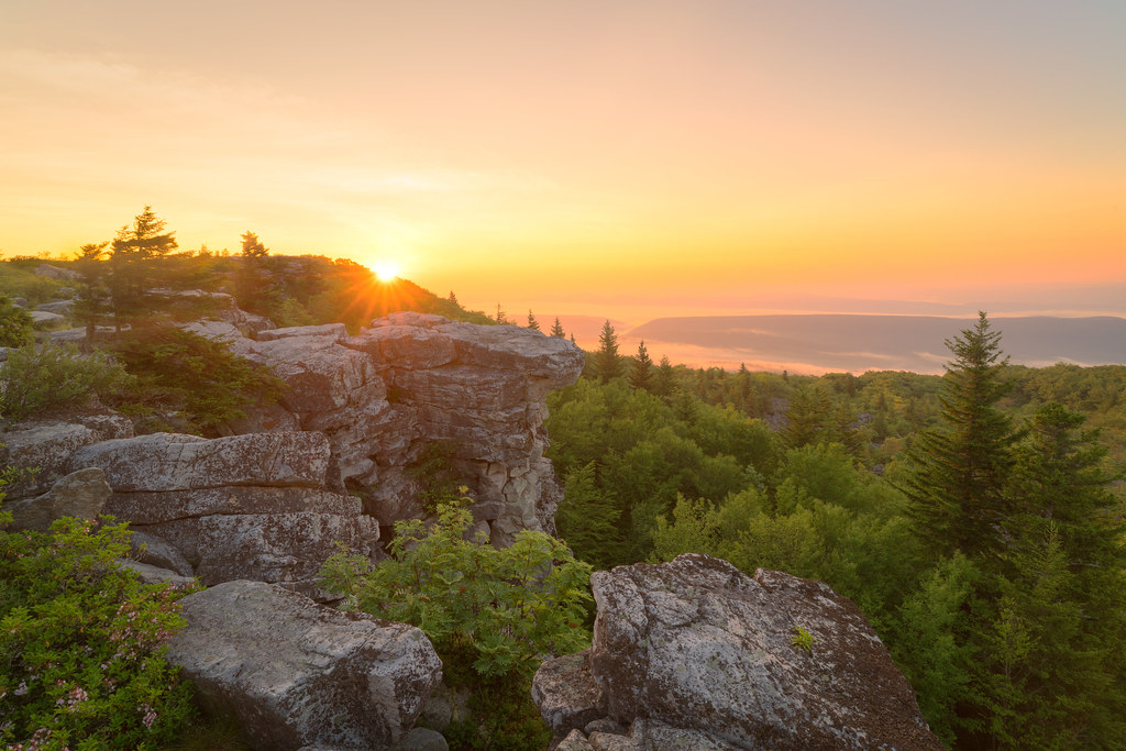 Image result for photos of sunrise at dolly sods, wv
