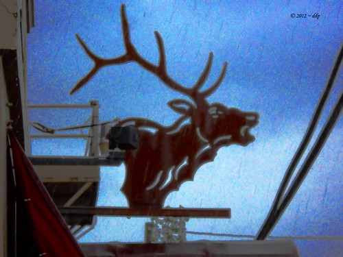 ELK Sculpture in Odd Location and in Pouring Rain | by Pixel Packing Mama ~ 25 Million Views
