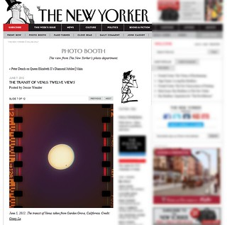The New Yorker | by ThuGiang Le