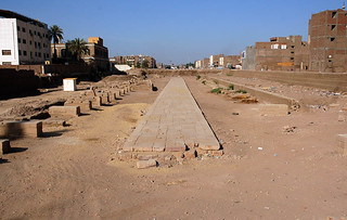 The excavations of the avenue of sphinxes connecting the Luxor and Karnak temples | by The Egypt Exploration Society
