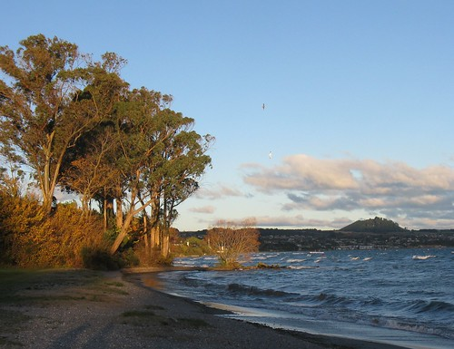 Lake Taupo on a Windy Autumn Afternoon | by marlow_pete