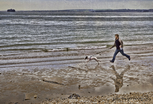 Dog takes man for a walk | by Julie Bridger Photography
