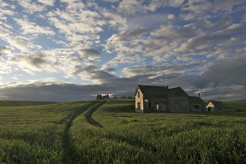 Palouse House | by druzziel