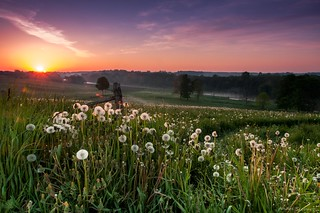 Ontario Sunrise | by Andre@home