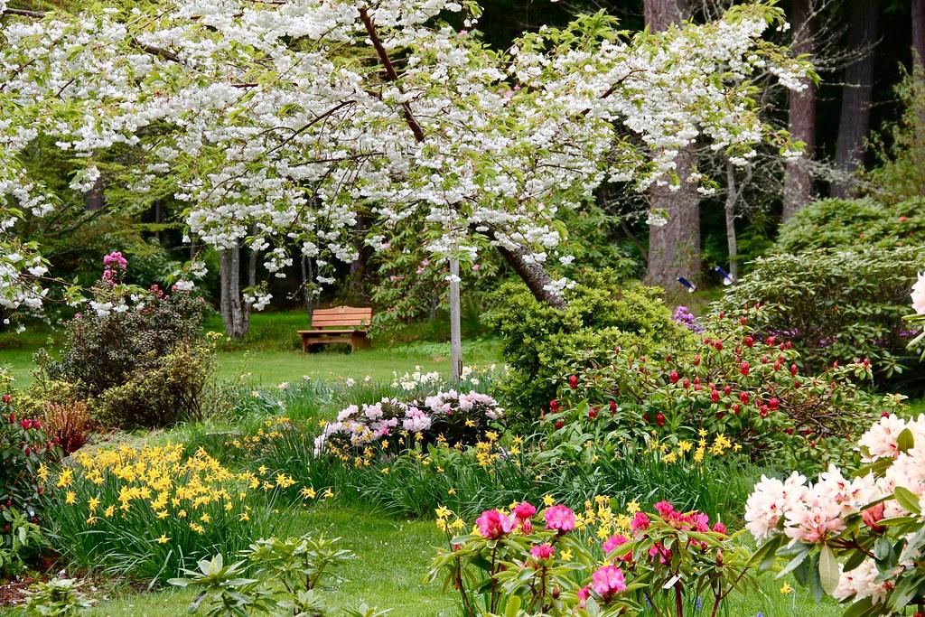 Meerkerk Gardens 12\'0426 - 011 | karen | Flickr