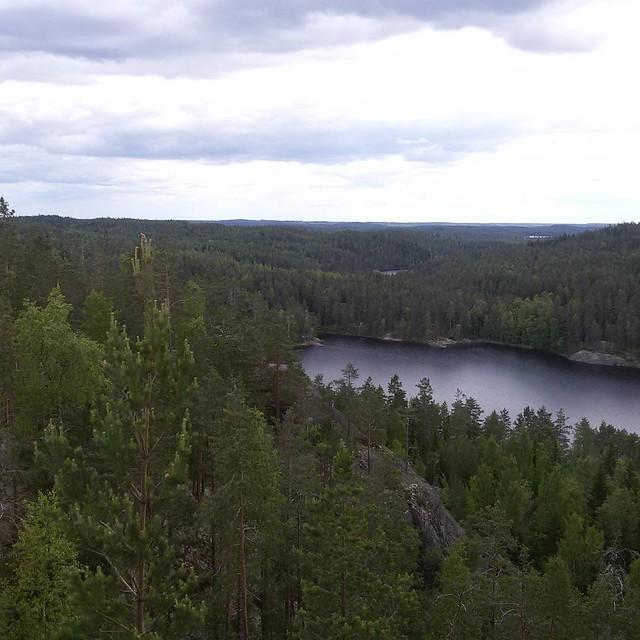 Цель нашего похода в парк #Repovesi -  башня #mustalamminvuori с великолепным видом почти под облаками! #Финляндия #Finland #nature #sky #trees #lake #clouds #природа #облака #деревья #озеро  #облака #башня  #tower #torni #näkötorni #вышка