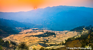 Sunset Over Terraced Field @ Yuanyang | by Feng Wei Photography
