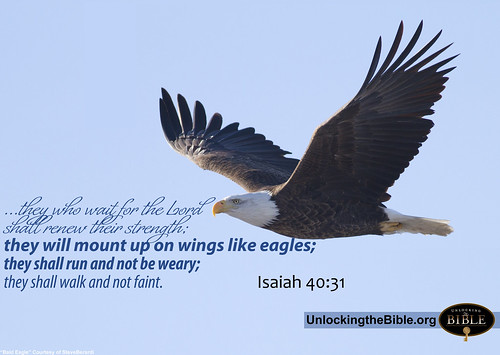 Mount Up on Wings like Eagle Isaiah 40:31 | by UnlockingTheBible