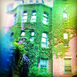 I love overgrown buildings! | by galadarling