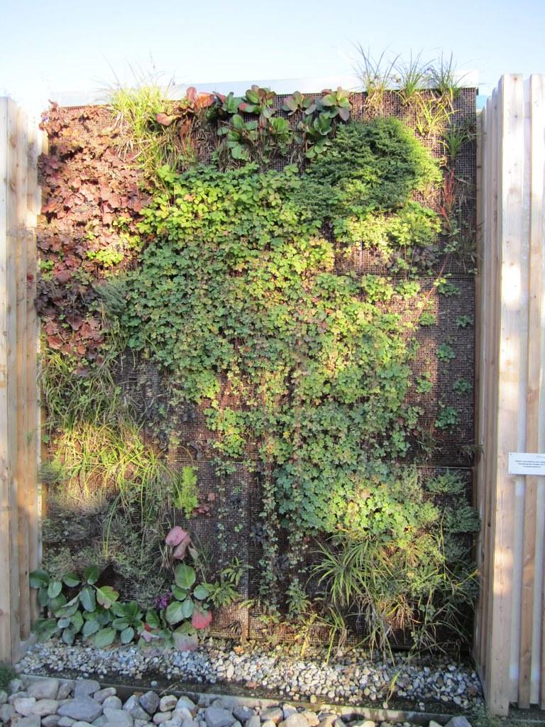 Vertical Gardening Vertikal Garten Der Munchner Gartner Flickr