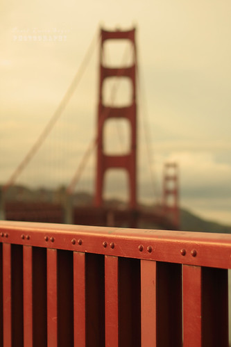 Golden Gate Bridge Fence | by .•۫◦۪°•OhSoBoHo•۫◦۪°•
