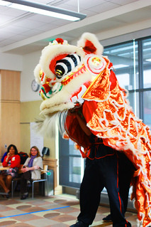 Lion Dance by Jow Ga Kung Fu Athletic Association | by Howard County Library System