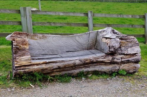 Tree Trunk Bench Jay Flickr
