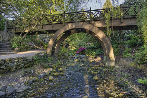 Wood Bridge at Crystal Springs Rhododendron Garden in Portland Oregon - HDR | by David Gn Photography