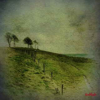 A Green Hill | by Hotfish