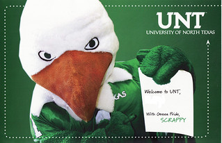 UNT Eagle | by Calsidyrose