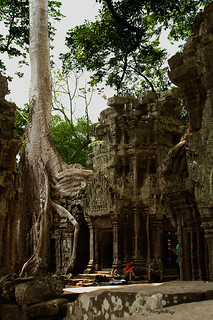 Ta Prohm | by Henry der Mops