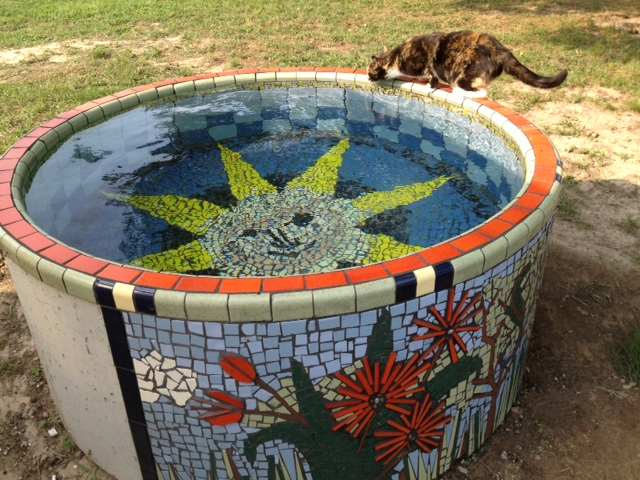 By Cowgirls8 Concrete Stock Tank Turned Into Garden Water Garden. | By  Cowgirls8
