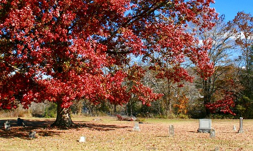 Curlee Cemetery, Cannon Co, TN | by gravescout