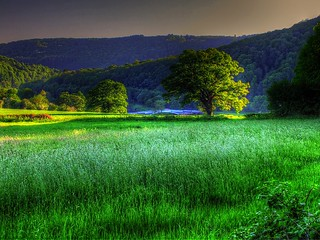 Wye valley evening | by Adelino Goncalves