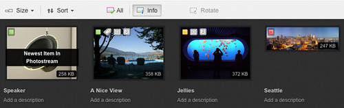 "Flickr Web Uploadr UI: ""Info"" View 