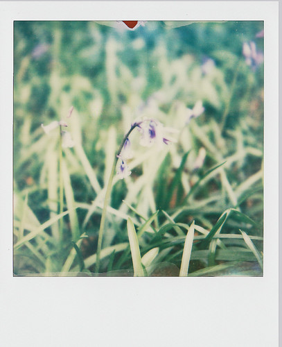 PX680 Test | by nickcolledge