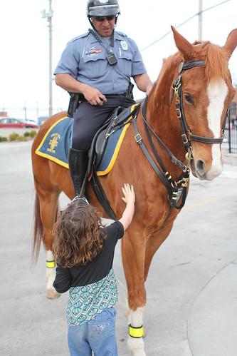 Kansas City Jobs With Horses
