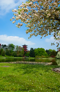 Japanese Pavilion, Brussels | by danny1792