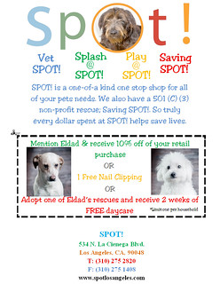 SPOT Coupon - 10% off discount!! | by Eldad Hagar (Please support Hope For Paws)