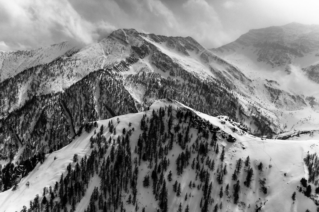 Bianco E Nero Francesca Botta Flickr