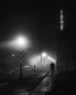 the night is on my mind (Royal Oak 2011) | by .brianday