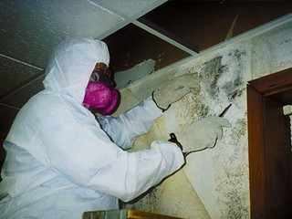 Mold Removal -- Tips on Reducing Mold at Home | by moldreports101