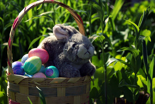 Wishing Everyone A Hoppy Easter! | by kimberlyrenee photography