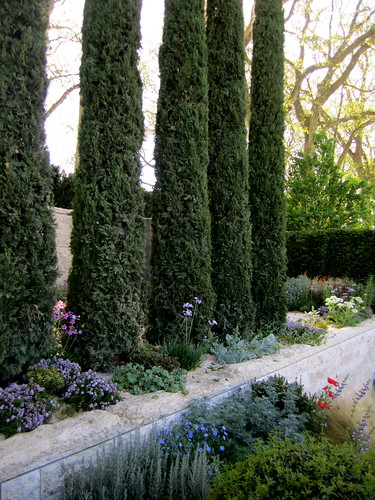 Garden Design Trees garden design, cypress trees   la citta vita   flickr