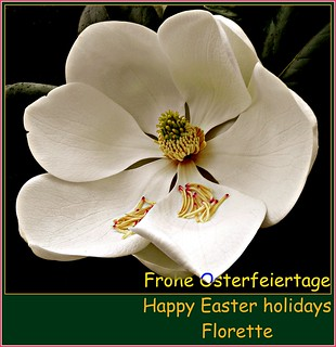 Frohe Osterfeiertage ~ Happy Easter holidays | by © the-best-is-yet-to-come ©