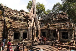 The Iconic Ta Prohm Shot | by Boots in the Oven