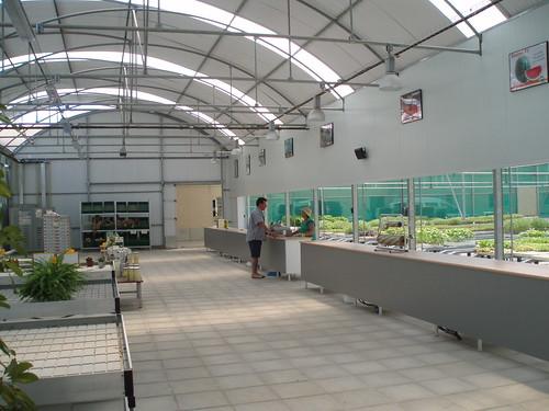 Invernadero para centro de jardineria son estructuras for Centro de jardineria