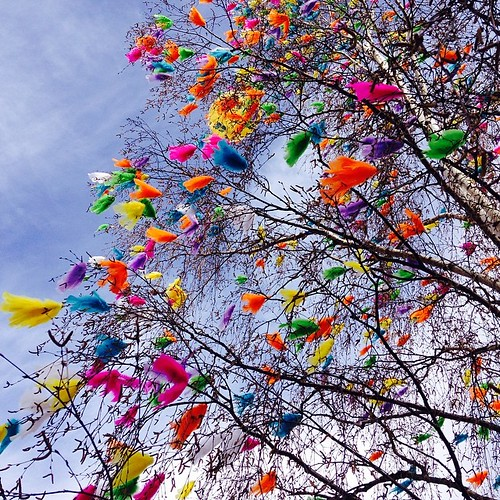 Gee, they decorated this tree just for me! :) #easter #decoratedtree #feathers #colorhappiness | by iHanna