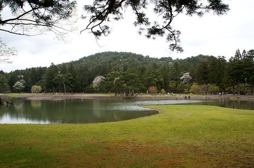 毛越寺の画像 p1_10