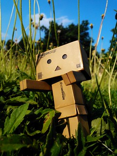 Nokia Lumia 900 @ Danbo lost in flowers | by JTproductions