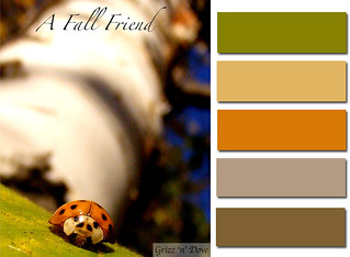 A Fall Friend | by Heidi [Banks of Frog Creek]