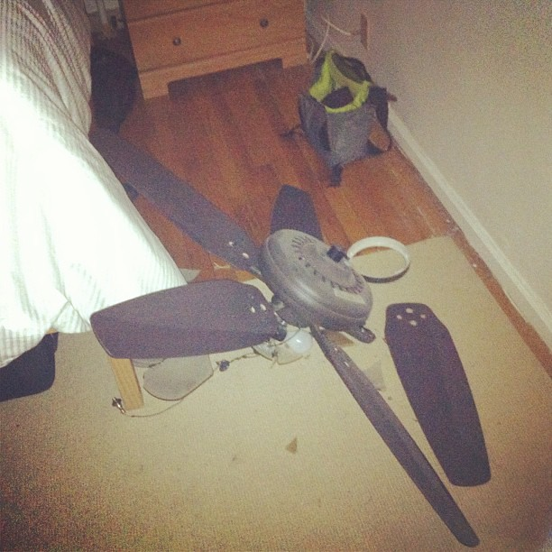 Just escaped death by falling ceiling fan lauren farmer flickr by laurenfarmer just escaped death by falling ceiling fan by laurenfarmer aloadofball Gallery