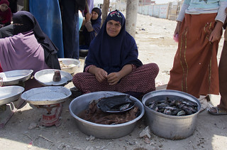 Women selling fish on the roadside, Fayoum, Egypt. Photo by Samuel Stacey, 2012.