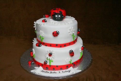 Madybird Cake