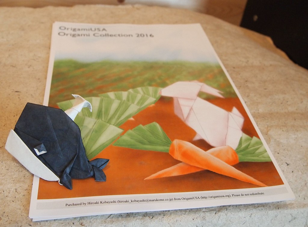 Origami My Little Whale Diagram Is In Origami Usa 2016 O Flickr