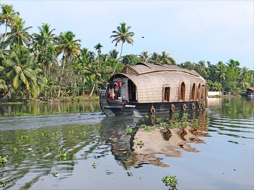 Dans les Backwaters (Kerala, Inde)