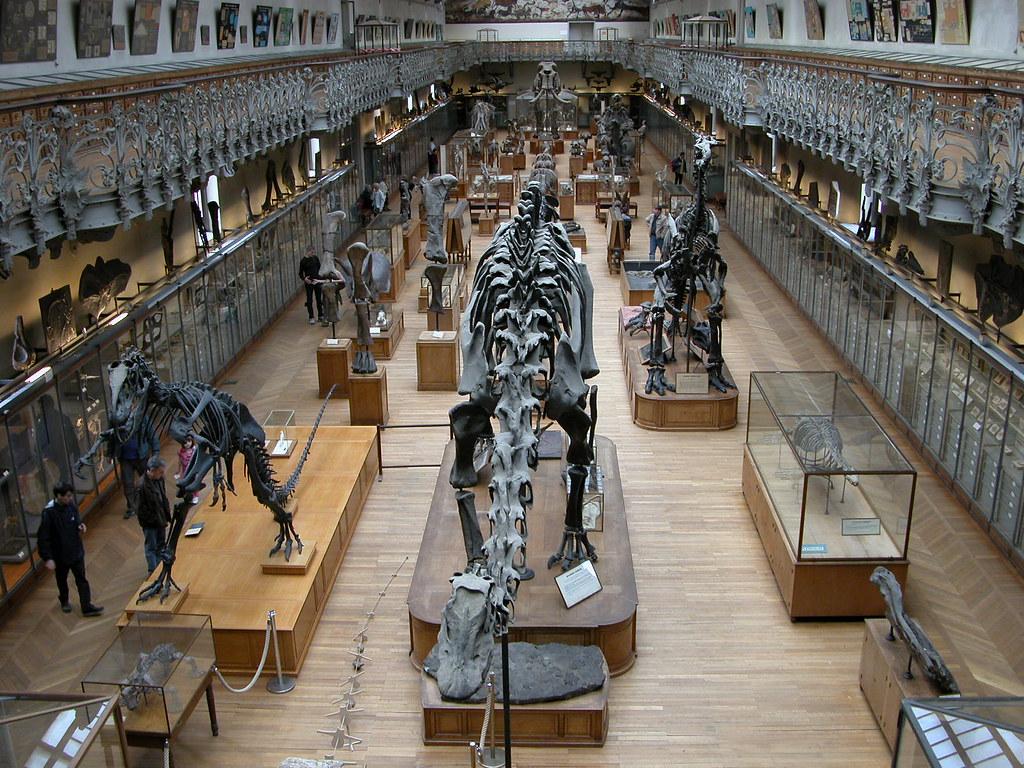 Museo de Anatomia Comparada de París | ...de los tiempos de … | Flickr
